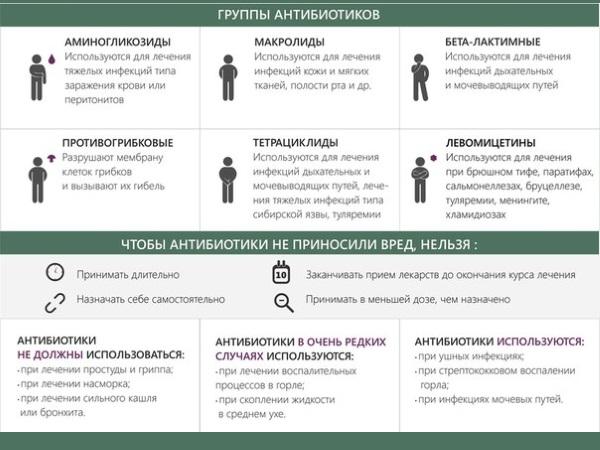 Б лактамные антибиотики