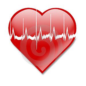 Сердцебиение максимальное